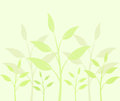 Plant background delicate vector illustration Royalty Free Stock Photos