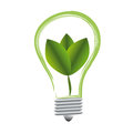 Plant growing inside the light bulb Royalty Free Stock Image
