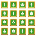Plant leafs icons set green