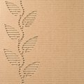 Plant with leaves cut out on a corrugated cardboard Royalty Free Stock Images