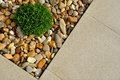 Plant pebbles and paving texture landscaping combinations of Stock Images