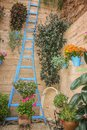 Plant pots with blue staircase in typical Andalusian patio Royalty Free Stock Photo