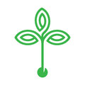 Plant with seed and green leaves logo icon design