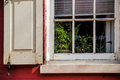 Plant in the window a houseplant of this historic philadelphia home Royalty Free Stock Image