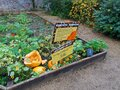 Planted flower beds in a walled garden with a Pumpkin Trail Royalty Free Stock Photo
