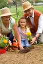 Planting flowers together Royalty Free Stock Photos
