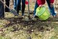 Planting a tree senior people Stock Image