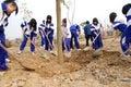 Planting trees Royalty Free Stock Photo