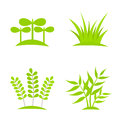 Plants icons green growing collection vector illustration Stock Image