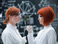 Plants versus technology close up of two women in a laboratory comparative analyzing a plant and a hard disk Stock Photos