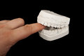 Plaster jaw biting human finger Royalty Free Stock Photos