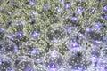Plastiс spheres Royalty Free Stock Photo
