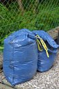 Plastic bin bags full of garden rubbish ready for recycling Stock Images
