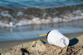 Plastic coffee cup garbage between kelp on the beach Royalty Free Stock Photo