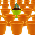Plastic garden pot Royalty Free Stock Photography