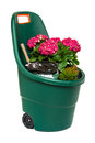 Plastic garden wheelbarrow full of flowers Royalty Free Stock Photo