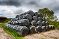 Plastic hay bales stored on a farm Stock Image
