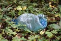 Plastic trash in the forest. Tucked nature. Plastic container ly Royalty Free Stock Photo