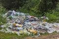 cestino e rifiuti