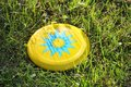 Plastic frisbee flying disc lying in the grass in the park. Children`s toy for active outdoor games. Royalty Free Stock Photo