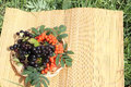 Plate with berries of a red mountain ash and chokecherry standing on straw napkin in garden Royalty Free Stock Images