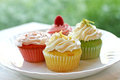 Plate of four colorful springtime cupcakes Royalty Free Stock Photo