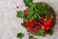 Plate with fresh berries strawberries and currants. Royalty Free Stock Photo