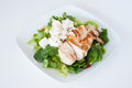 Plate of fresh chopped grilled chicken salad on a white background Royalty Free Stock Photography