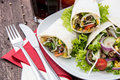 Plate with fresh Wraps Royalty Free Stock Photography