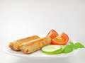 Plate of homemade spring rolls with cucumber and tomato slice Stock Image