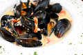 Plate of mussels in garlic sauce horizontal Royalty Free Stock Image