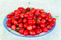 A plate of red cherries Royalty Free Stock Photo