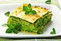 Plate of vegeterian lasagna Royalty Free Stock Photography