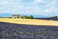 Plateau de valensole provence house and lavender fields alpes haute alpes cote d azur france country field of at summer Royalty Free Stock Image
