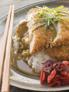 Plated Tonkatsu with Vinegar Rice, Curry Sauce Stock Photos