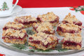 Platter of Cranberry Bars Stock Photos