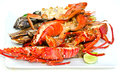 Platter lobster mussels fish prawns Stock Image