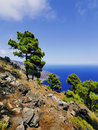 Playas hierro island las cliffs and beach on canary islands spain Royalty Free Stock Photography