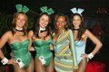 Playboy Bunny,Playboy Bunnies Royalty Free Stock Images