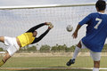 Player scoring goal while goalkeeper diving to save it rear view of young Royalty Free Stock Photography