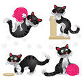 Playful funny black cats in different situations isolated on white background Stock Photo