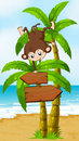 A playful monkey at the beach with an arrowboard illustration of Stock Photography