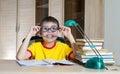 Playfull boy in funny glasses doing homework books on table education concept Stock Image