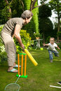 Playing cricket. Royalty Free Stock Photo