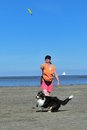 Playing frisbee with australian shepherd dog owner is at north sea strand germany Stock Photos