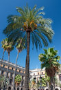 Plaza Reial, Barcelona Stock Photo