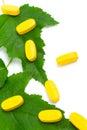 Píldoras de la vitamina sobre las hojas verdes Fotografía de archivo libre de regalías