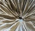Pleat texture sculpture lotus leaf with art design Stock Photos