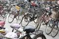 Plenty bicycles Royalty Free Stock Photo