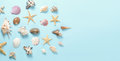 Plenty of different seashells on a blue background. Seaside themed backdrop for travel agency template advertising or Royalty Free Stock Photo